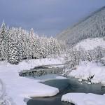 Enjoy the winter wonderland of the Canadian Rockies.