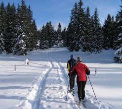 Banff Cross Country Skiing