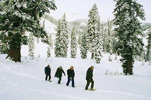 Canadian Rockies Snowshoeing